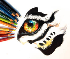 Colorful Tiger Eye by Lucky978