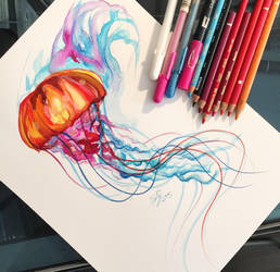 50- Jellyfish by Lucky978