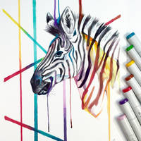 Zebra by Lucky978