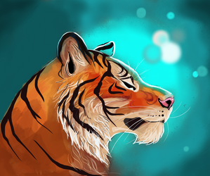Tiger by Lucky978