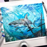 Shark by Lucky978