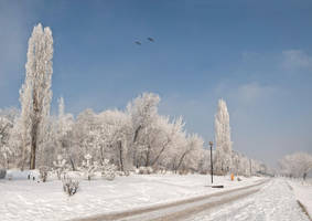 Winter 3.6 by LCristian