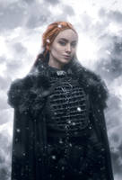Sansa Stark by Akunohako