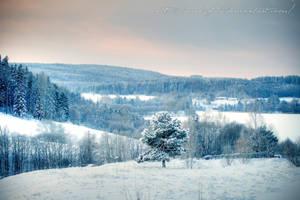 Village Winterscape by Arai-Foto