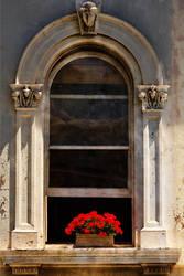 Flower Box by Phill-J