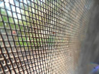 The net by YoLoL