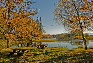 Autumn II by Sepukas