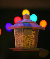 Birdhouse by Blazingcurent