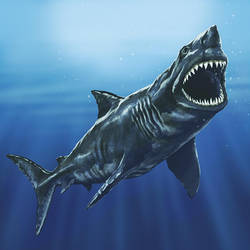 Megaladon by rampartpress
