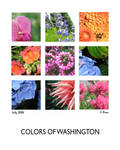 Colors of Washington by MeanBean06