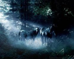 Moonlight Sonata by gladly