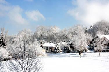 Heavy winter I by sibbl