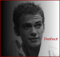 Perfect by HC-fans