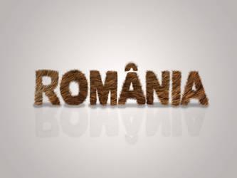 Romania - Bear fur typography wallpaper by Zaigwast