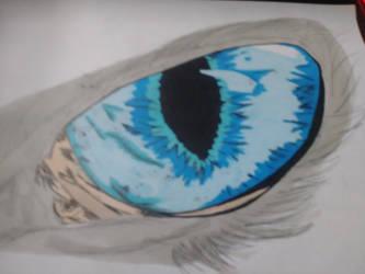 Wolf eye wip by djakal12