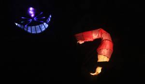 Luminara Cheshire Cat by falcona