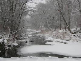 Pleasant Run Springs Winter 3 by wax-wing