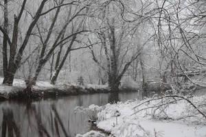 Pleasant Run Springs Winter 6 by wax-wing