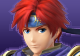 Project M SSB4 Roy CSS by SylveonGives