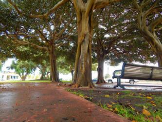 Coronado Park 02 by Worldboy1