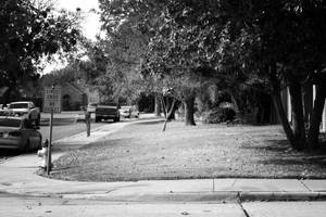 A Suburban Truth by PhillyPuddy
