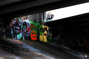 Bridge Tagging by PhillyPuddy