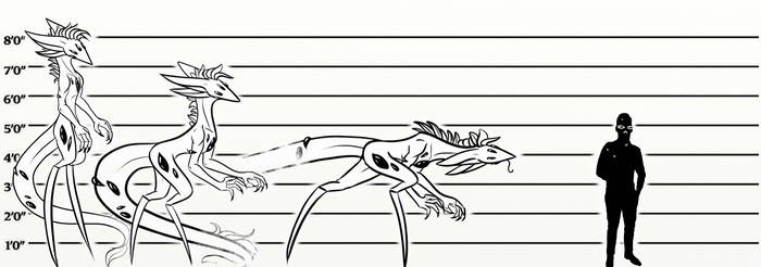 Eye-sore species height chart . by cross-the-swirl