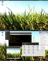 Debian - 20090418 by hadret