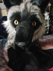 Silver fox Sarity Plush by sparkskull789