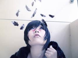 Hawke Feather by Inushio