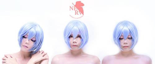 Project Ayanami by Inushio