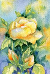 Summer Flowers 6 by Til-Til