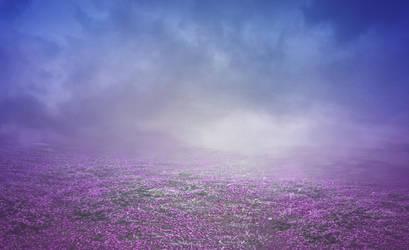Premade campo de flores by Marazul45