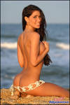 Ericka Underwood Shell Belt by Bikinimods