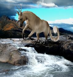 River Run by miragedtheory