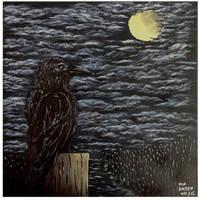 Black bird by maxhassen