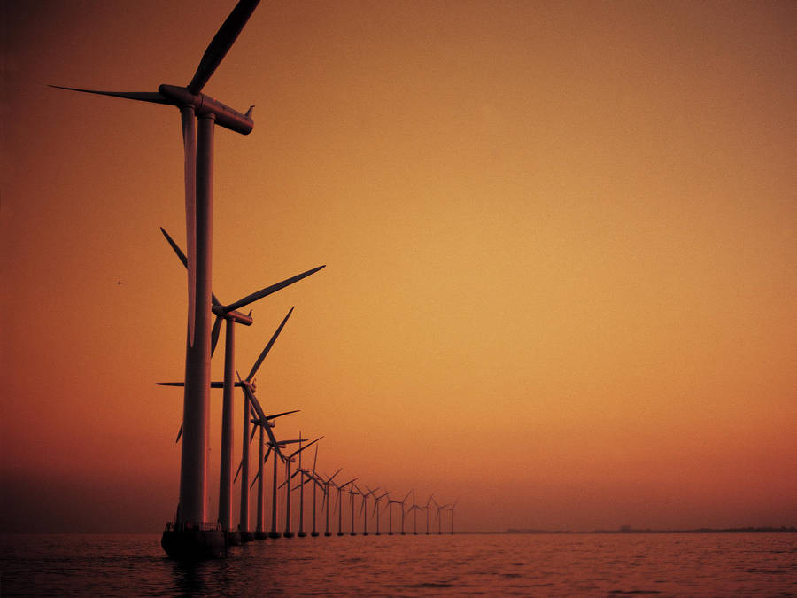 Wind farm a summer evening by NSLC