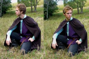 Prince in Purple_1 by GoblinStock