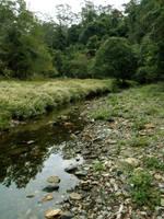 Meadow Creek 1 by GoblinStock
