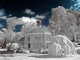 Gustave Eiffel - Glasshouse {Infrared} by ToneeGee