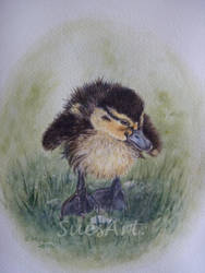 Dilly Duckling by SueMArt