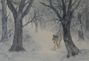Winter Wolf. by SueMArt