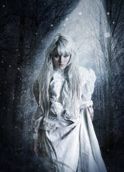 Winter Princess by fantasmadesign