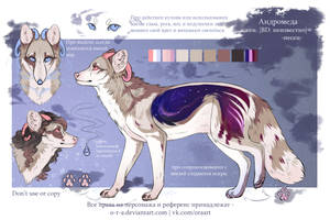 Andromeda reference sheet 2016 by O-R-A