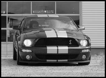 Shelby GT500 by L-S-P
