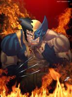 Wolverine by joingaramo17