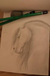 Horse by Shayaga