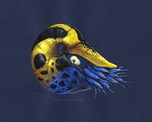 Poison Dart Nautilus by MegLyman