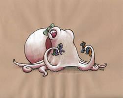 Albino Octopus by MegLyman