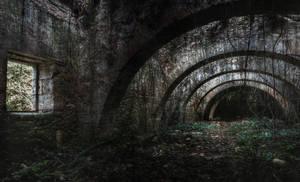 The Path by fibreciment